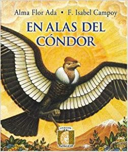 On the Wings of the Condor Spanish Children's Book