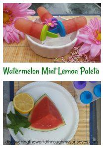 Watermelon Mint Lemon Paleta