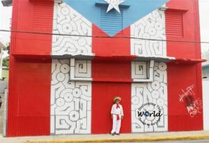 Puerto Rico: Proyecto  78 pueblos 1 bandera